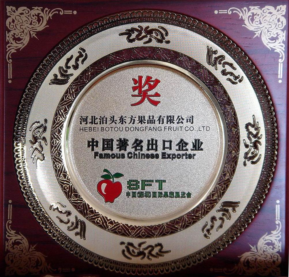 2007年中国著名出口企业