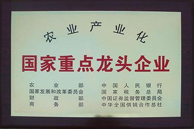 2012年泊头东方