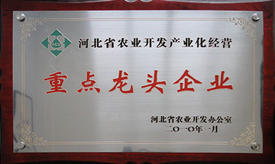 2010省农开办龙头企业