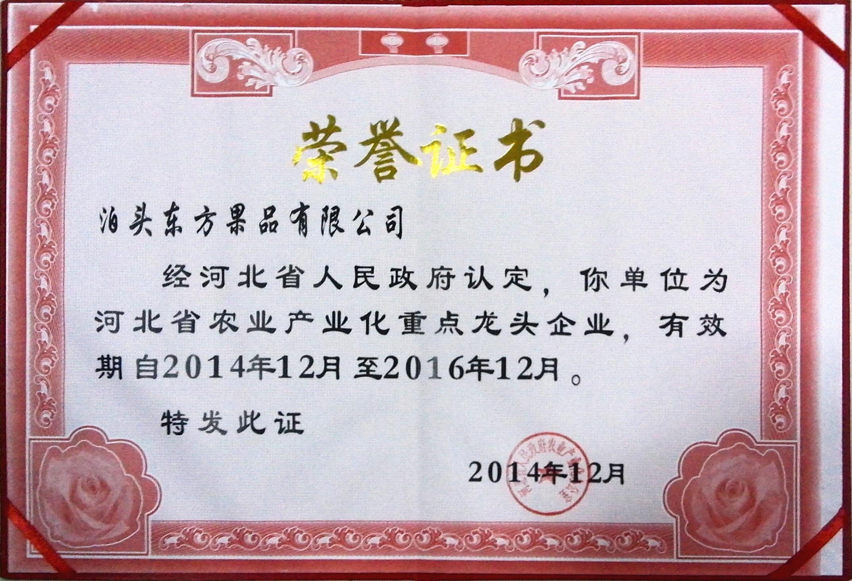 2014年省龙头证书