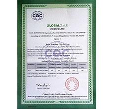 2014年GAP认证证书