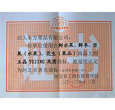 2012年玉晶商标延续