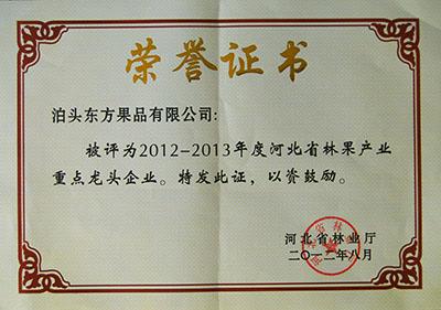 2012年省林业重点龙头企业证书