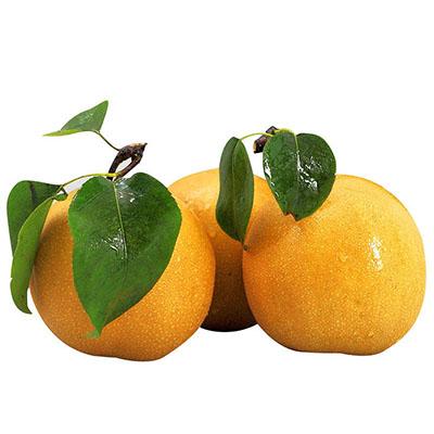 Nanshui pear