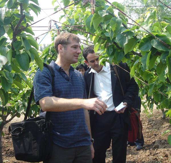 新西兰预检果园
